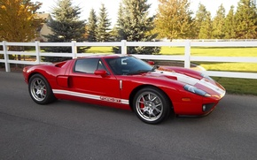 Picture Ford, Red, White, Stripes, GT