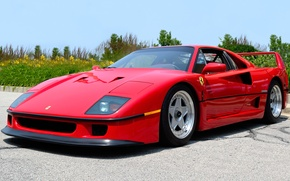Picture red, Ferrari, Ferrari, the front, F40