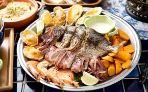 Wallpaper fish, shrimp, mussels, squid, sweet potato