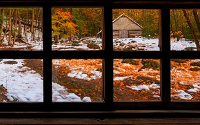 Picture winter, road, autumn, forest, grass, leaves, snow, trees, nature, house, Park, colors, colorful, window, house, ...