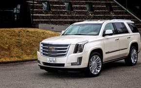 Picture Cadillac, Escalade, Cadillac, JP-spec, 2015, Platinum, Escalade