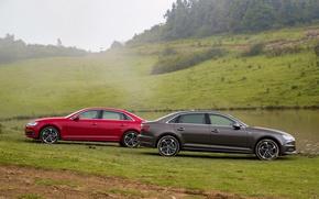 Picture Audi, Grass, Car, 2015-16, A4