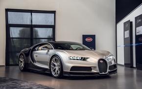 Picture Bugatti, Room, 2016, Chiron