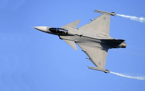 Picture You can, Gripen, JAS 39, SAAB Avionics, Swedish multi-role fighter of the fourth generation