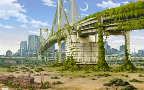 Picture road, bridge, the city, thickets, destruction, postapokalipsis, art, Tokyo Ganza