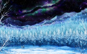 Picture winter, the sky, girl, stars, snow, trees, landscape, night, traces, nature, Northern lights, anime, art, …
