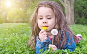 Picture nature, girl, lies, dandelions, Rus