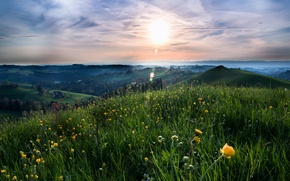 Picture summer, grass, the sun, clouds, landscape, flowers, nature, hills, Field, meadow