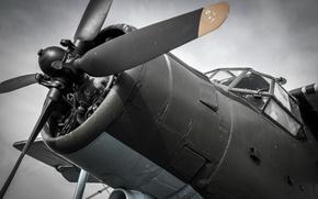 Picture aviation, Biplane, Antonov An2