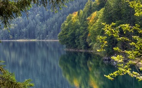 Picture autumn, forest, reflection, Germany, Bayern, Germany, water surface, Bavaria, Lake Eibsee, lake Eibsee
