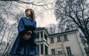 Picture house, bear, girl, Maxim Guselnikov, The Amityville Horror