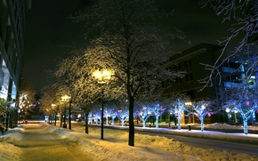 Picture winter, snow, trees, the city, lights, lights