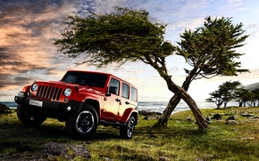 Picture jeep, Wrangler, Jeep, Unlimited, 2015, EU-spec