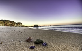 Picture sand, water, stones, shore, landscapes, shell, shell, beaches