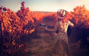 Picture girl, guitar, hat, vineyard