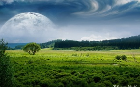 Picture field, forest, clouds, the moon, Dreamy World