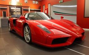 Picture Ferrari, red, supercar, Enzo, salon