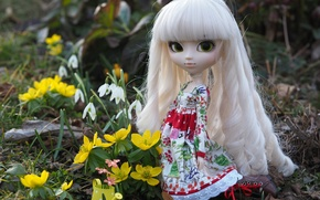 Picture flowers, hair, toy, doll, dress, snowdrops, curls