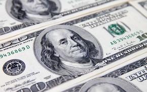 Wallpaper face, money, dollar
