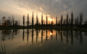 Picture trees, pond, Sunset, The sun