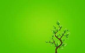 Wallpaper minimalism, tree, branch, greenish background, drops, leaves