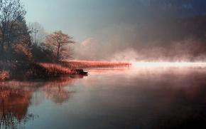 Wallpaper autumn, nature, fog, lake, river, shore, morning, couples
