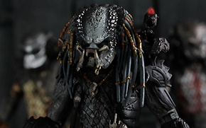 Picture background, predator, being, Predator, thing