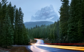 Picture road, forest, light, mountains, nature, lights, fog, excerpt