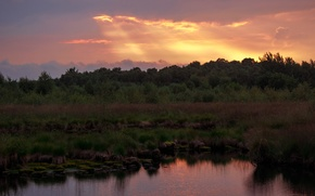 Picture forest, the sky, sunset, nature, pond, forest, Nature, sky, sunset, pond