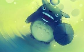 Picture cat, anime, My neighbor Totoro