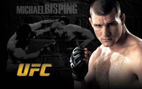 Wallpaper mixed martial arts, mma, fighter, ufc, fighter, michael bisping, Michael Bisping, count