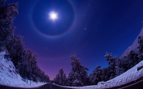 Picture light, snow, road, Nature, the moon, night, Winter, the sky, stars, forest