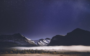 Picture forest, the sky, stars, mountains, night, fog