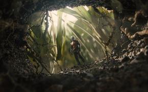 Picture costume, superhero, entrance, comic, Marvel, St., Ant-man, Ant-man