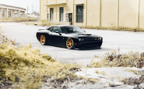 Wallpaper Rohana, RFX5, Black, Wheels, Hellcat, Challanger, Dodge