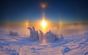 Picture frost, day, wonderful, and the sun