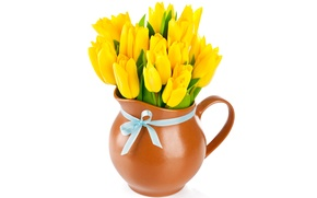 Picture bouquet, yellow, tulips, pitcher, bow, flowers, tulips