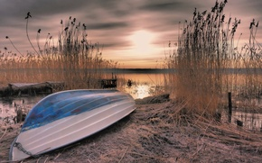 Picture sunset, lake, boat, reed