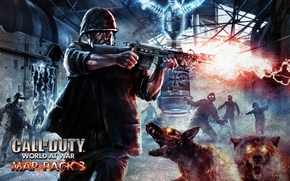 Picture World at War, Nazi Zombies, Call of Duty