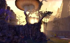 Picture the sun, landscape, the elder scrolls, The Elder Scroll Online, TESO, The Edlder Scrolls, eso