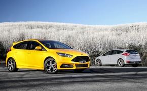 Picture Ford, focus, Focus, Ford, AU-spec, 2015