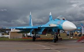 Picture the plane, fighter, max, the show, su-27
