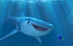 Picture Pixar, sea, ocean, water, cartoon, friendship, shark, fish, friends, drawing, adventure, sugoi, subarashii, family, beluga, …