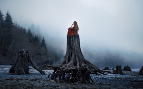 Picture forest, fog, loneliness, Girl