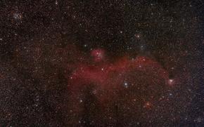 Picture space, stars, Seagull, Nebula