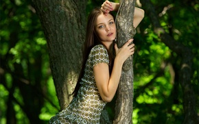 Picture greens, forest, girl, tree, dress, brown hair, Emily, amelie, gray-eyed