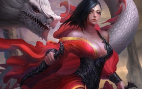 Wallpaper look, girl, weapons, dragon, dress, art, fantasy