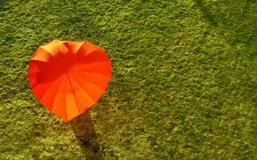 Picture green, red, grass, holidays, field, umbrella, Summer, sunlight, ground