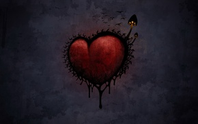 Picture the darkness, mushrooms, Heart