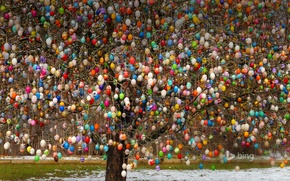 Picture tree, eggs, Germany, Easter, Saalfeld
